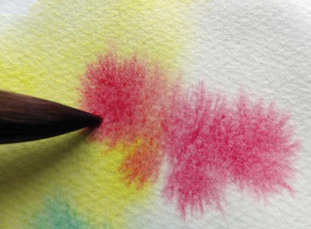 Pose de pigments sur papier humide