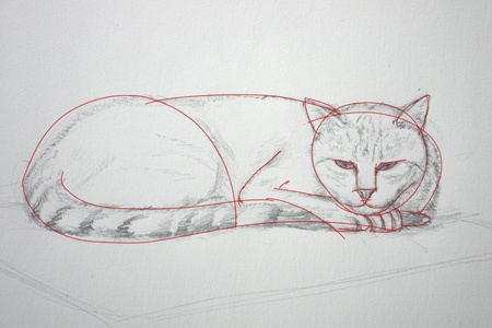 comment dessiner un chat couché