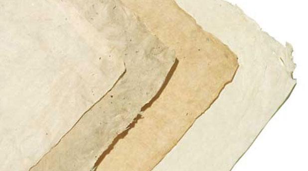 Himalayan Papers