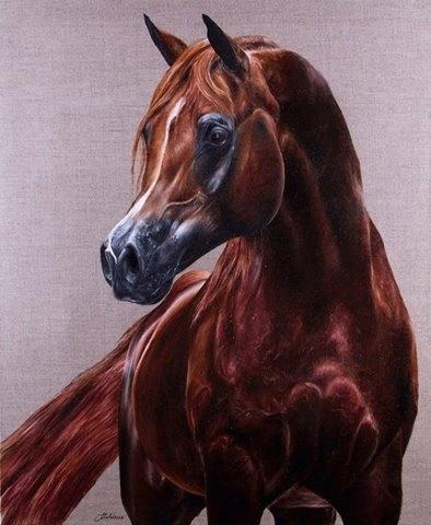 Bayard, Peinture à l'huile 60x73 cm par Marion Tubiana