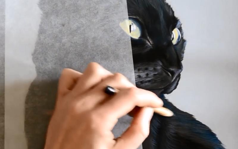 Peindre les sujets noirs aux pastels secs